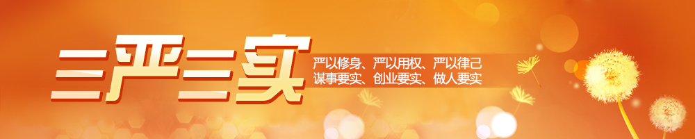 title='《国企干部三严三实修炼》'